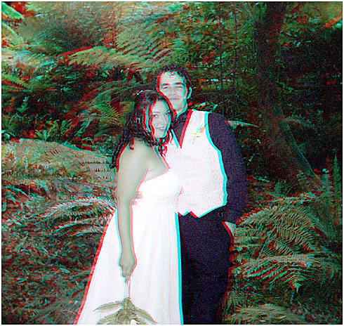 Tammy and Nathaniel Lee. 3-D Wedding Photography by Marc Dawson.